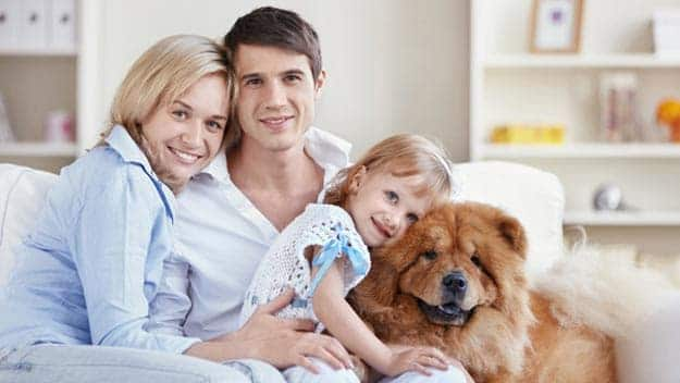 Wills & Trusts dog-young-family Direct Wills Knightsbridge